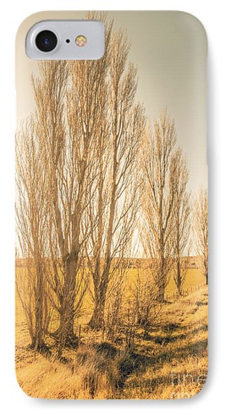 Winter Poplar Trees IPhone Case by Jorgo Photography - Wall Art Gallery