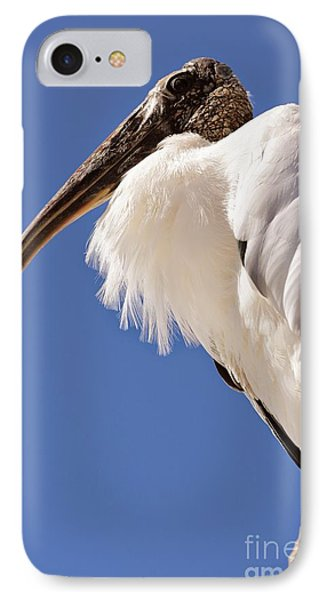 Wonderful Wood Stork IPhone 7 Case by Carol Groenen