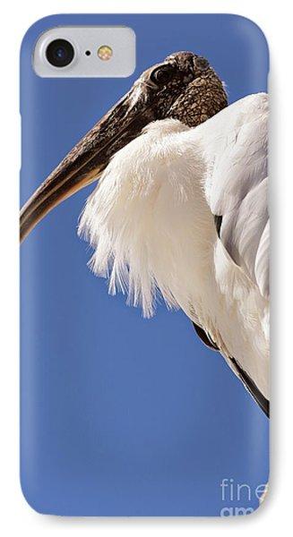 Wonderful Wood Stork IPhone Case by Carol Groenen