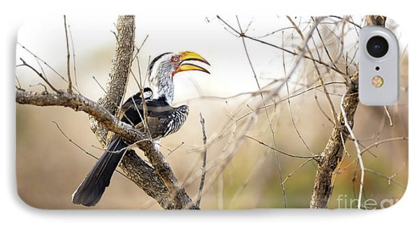 Yellow-billed Hornbill Sitting In A Tree.  IPhone 7 Case by Jane Rix