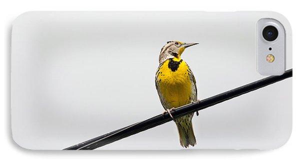 Yellow Bird IPhone Case by Rebecca Cozart