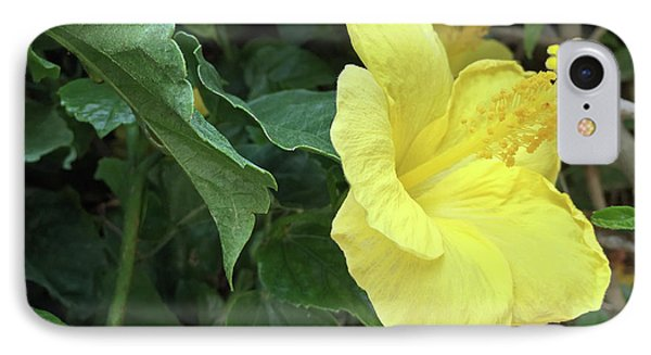 Yellow Hibiscus Phone Case by Aimee L Maher Photography and Art Visit ...