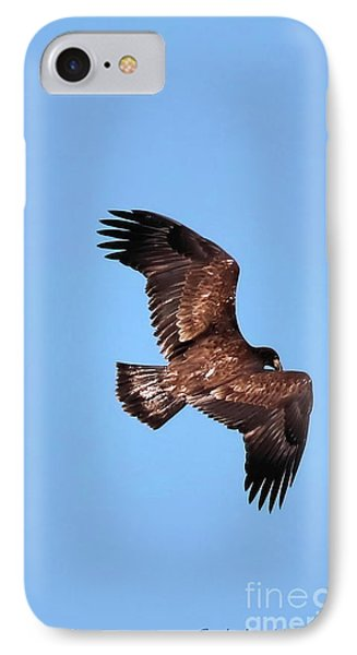 Young Bald Eagle In Flight IPhone Case by Sandra Huston