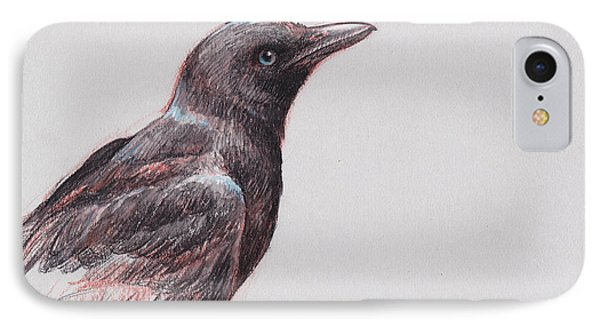 Young Crow 1 IPhone Case by Tracie Thompson