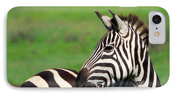 Zebra IPhone Case by Sebastian Musial