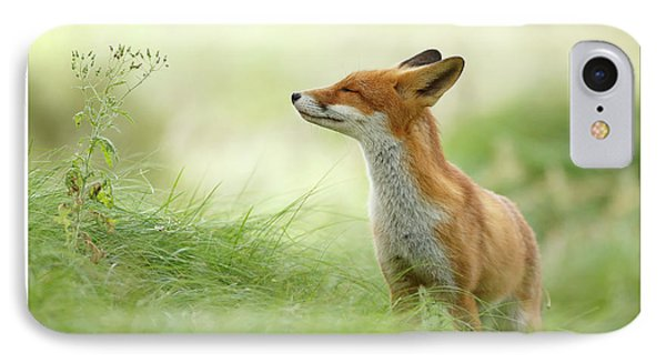 Zen Fox Roeselien Raimond IPhone Case by Roeselien Raimond