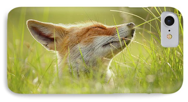 Zen Fox Series - Summer Zen Fox IPhone Case by Roeselien Raimond