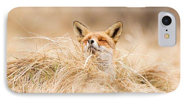 Zen Fox Series - Zen Fox 2.7 IPhone Case by Roeselien Raimond