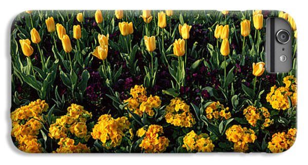Flowers In Hyde Park, City IPhone 7 Plus Case by Panoramic Images