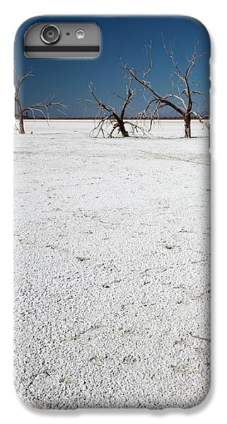 Dead Trees On Salt Flat IPhone 7 Plus Case by Jim West