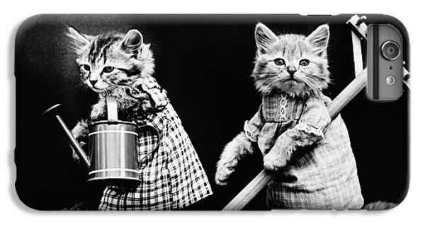 Frees Kittens, C1914 IPhone 7 Plus Case by Granger