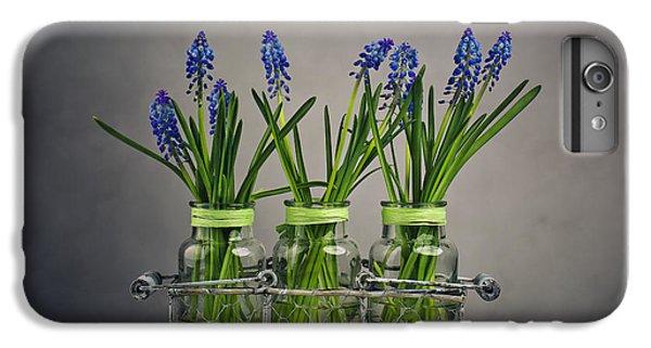 Hyacinth Still Life IPhone 7 Plus Case by Nailia Schwarz