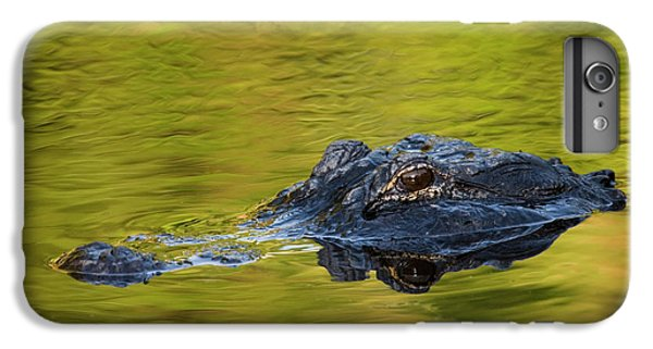 Usa, Florida, St IPhone 7 Plus Case by Jaynes Gallery