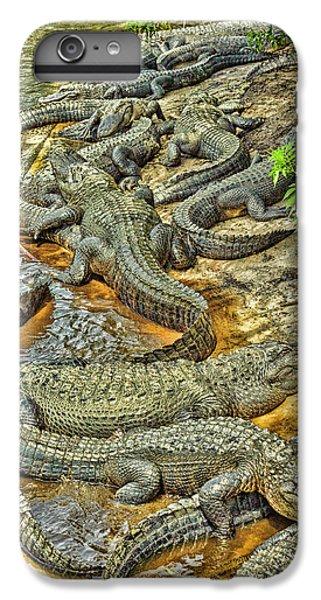 A Congregation Of Alligators IPhone 7 Plus Case by Rona Schwarz