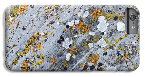 Abstract Orange Lichen 2 IPhone 7 Plus Case by Chase Taylor