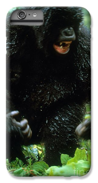 Angry Mountain Gorilla IPhone 7 Plus Case by Art Wolfe