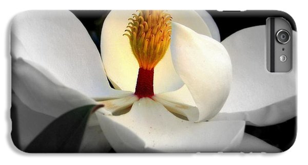 Candle In The Wind IPhone 7 Plus Case by Karen Wiles