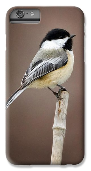 Chickadee IPhone 7 Plus Case by Bill Wakeley