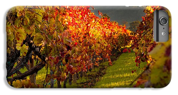 Color On The Vine IPhone 7 Plus Case by Bill Gallagher
