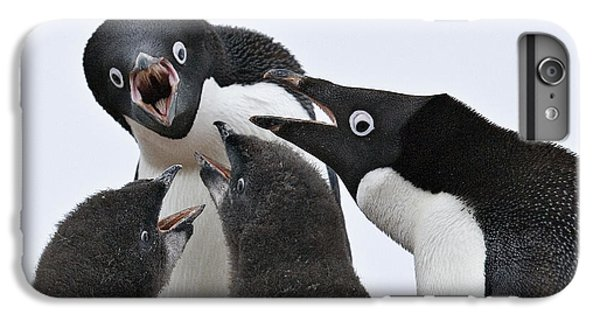 Four Penguins IPhone 7 Plus Case by Carol Walker
