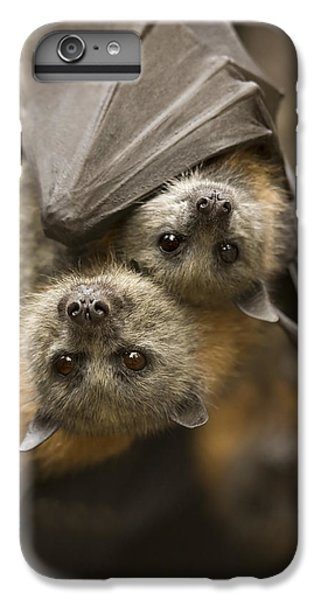 Hang In There IPhone 7 Plus Case by Mike  Dawson