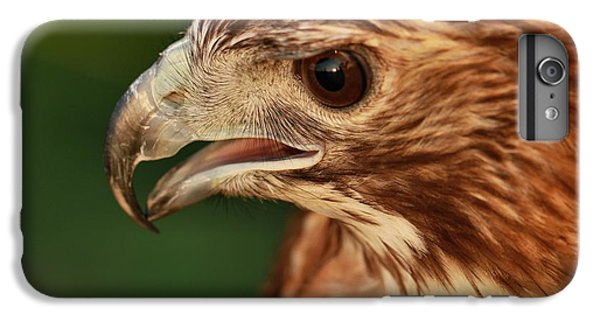 Hawk Eyes IPhone 7 Plus Case by Dan Sproul