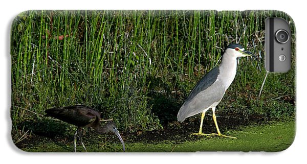Heron And Ibis IPhone 7 Plus Case by Mark Newman