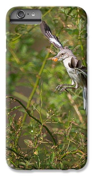 Mockingbird IPhone 7 Plus Case by Bill Wakeley
