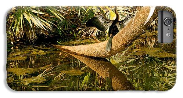 Oriental Darter Anhinga Melanogaster IPhone 7 Plus Case by Panoramic Images