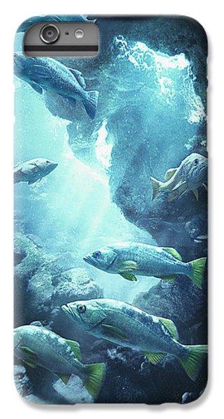 Rockfish Sanctuary IPhone 7 Plus Case by Javier Lazo