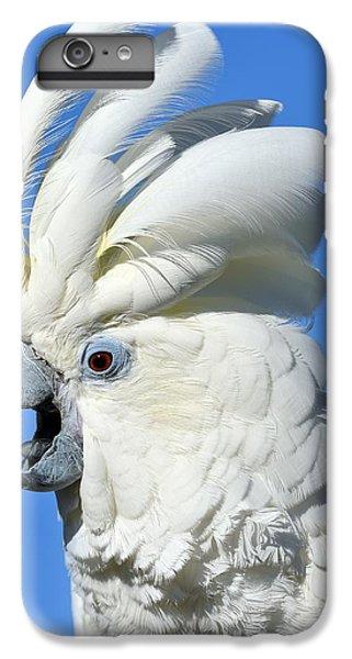 Shady Umbrella IPhone 7 Plus Case by Tony Beck