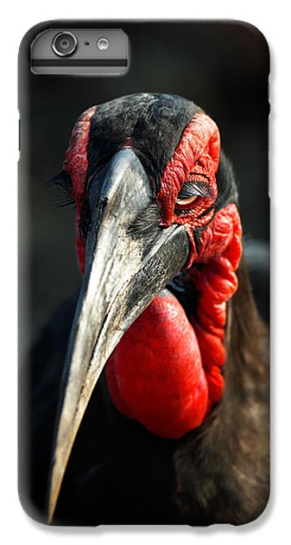 Southern Ground Hornbill Portrait Front View IPhone 7 Plus Case by Johan Swanepoel