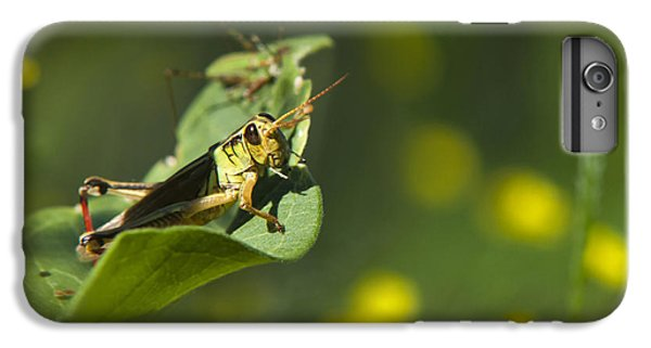 Sunny Green Grasshopper IPhone 7 Plus Case by Christina Rollo