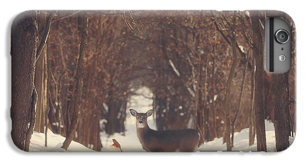 The Forest Of Snow White IPhone 7 Plus Case by Carrie Ann Grippo-Pike