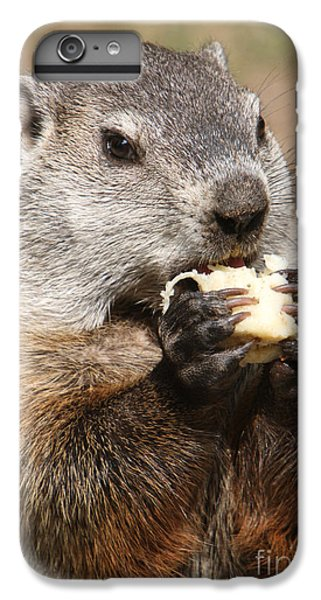 Animal - Woodchuck - Eating IPhone 7 Plus Case by Paul Ward