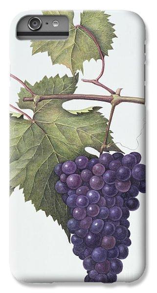 Grapes  IPhone 7 Plus Case by Margaret Ann Eden