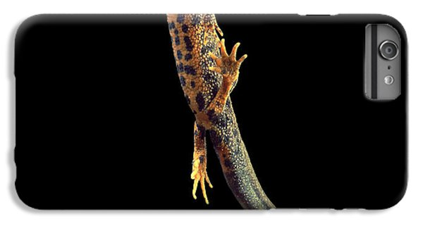 Great Crested Newt IPhone 7 Plus Case by Andy Harmer