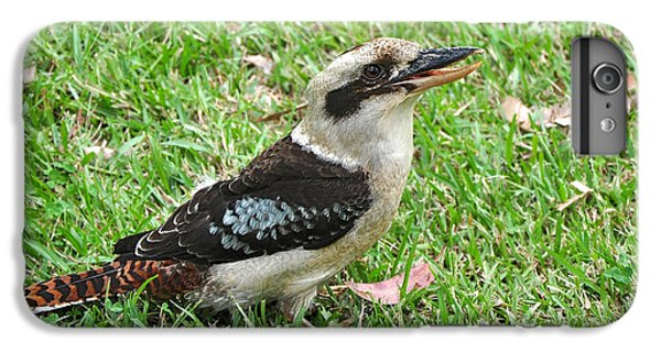 Laughing Kookaburra IPhone 7 Plus Case by Kaye Menner