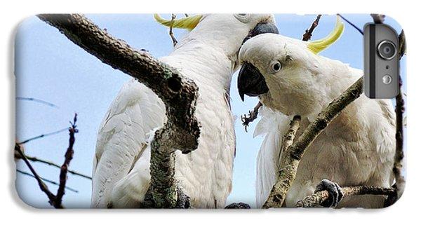 White Cockatoos IPhone 7 Plus Case by Kaye Menner