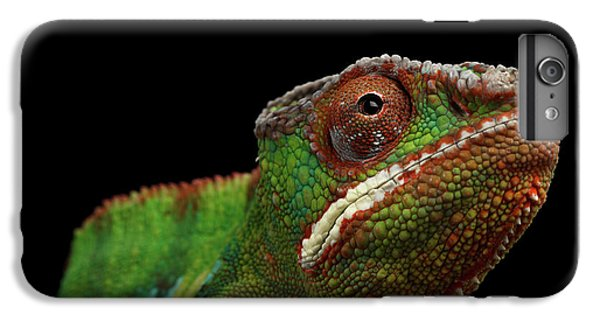 Closeup Head Of Panther Chameleon, Reptile In Profile View Isolated On Black Background IPhone 7 Plus Case by Sergey Taran