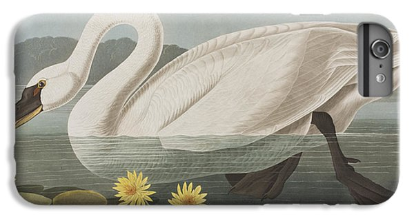 Common American Swan IPhone 7 Plus Case by John James Audubon