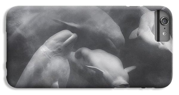 Dancing Belugas  IPhone 7 Plus Case by Betsy Knapp