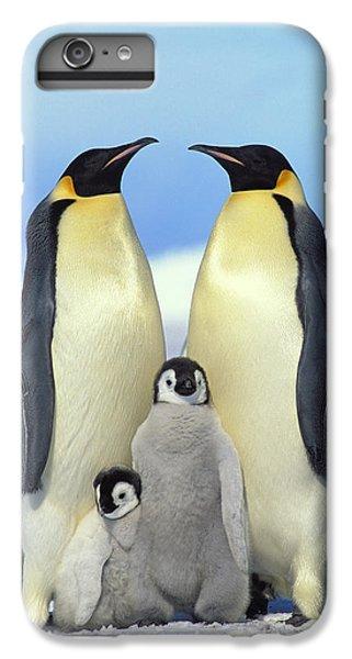 Emperor Penguin Aptenodytes Forsteri IPhone 7 Plus Case by Konrad Wothe