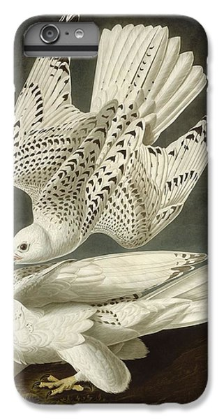 Iceland Or Jer Falcon IPhone 7 Plus Case by John James Audubon
