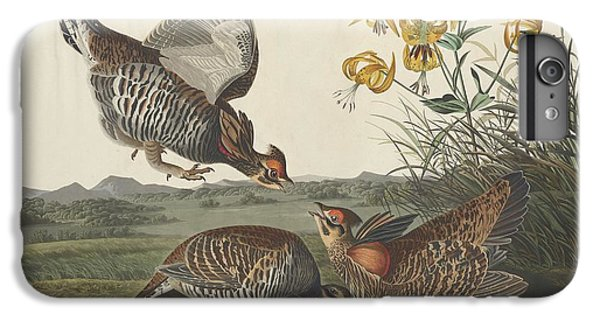 Pinnated Grouse IPhone 7 Plus Case by John James Audubon