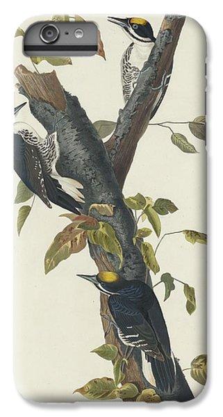 Three-toed Woodpecker IPhone 7 Plus Case by John James Audubon