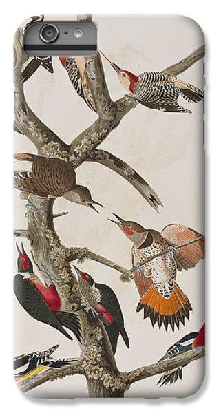 Woodpeckers IPhone 7 Plus Case by John James Audubon