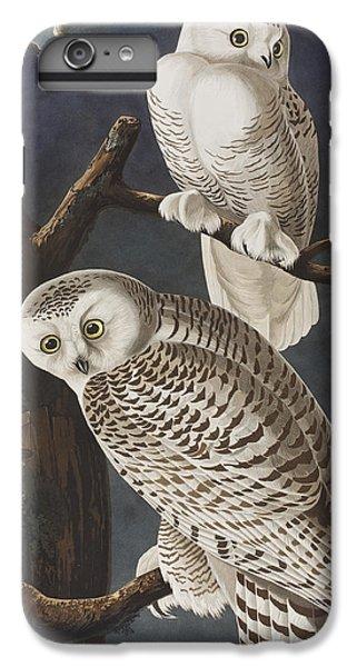 Snowy Owl IPhone 7 Plus Case by John James Audubon