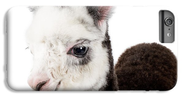 Adorable Baby Alpaca Cuteness IPhone 7 Plus Case by TC Morgan
