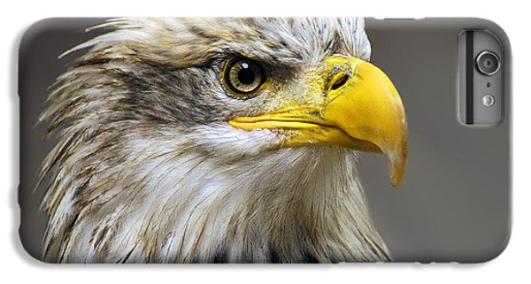 Eagle IPhone 7 Plus Case by Harry Spitz
